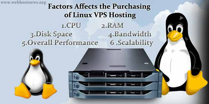 Factors affects the purchase of Linux VPS Hosting