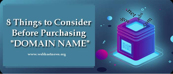 8 Things That You Must Consider Before Purchasing Domain Name